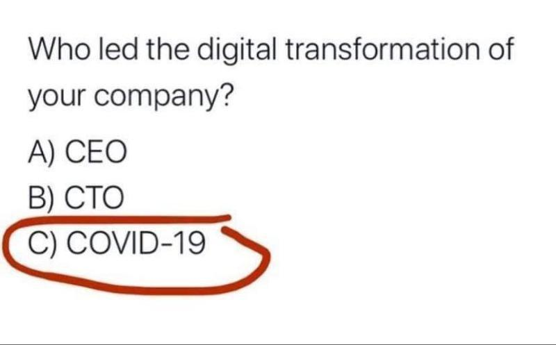 Who led the digital transformation?